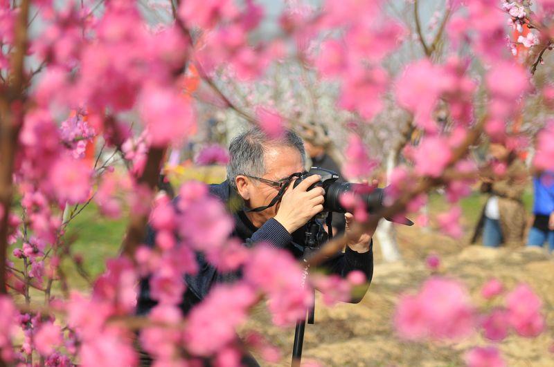 安徽频道【8】--桃园美景--人民网未开封的香菇过期图片