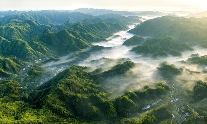 美丽中国:春光明媚大别山--安徽频道--人民网