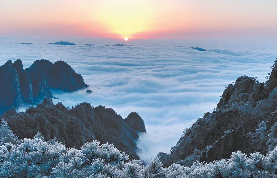 11月24日,众多游客来到黄山风景区狮子峰上观看雪后云海奇观.