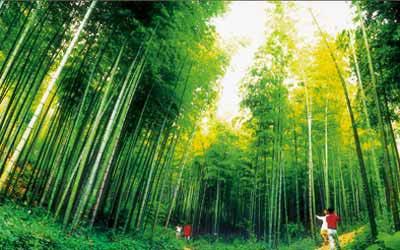 安徽频道 图说天下    濮塘简介:   濮塘自然风景区位于马鞍山市东部