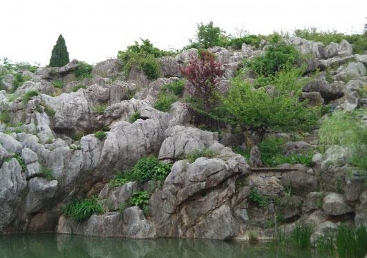 安徽频道 图说天下    丫山风景区位于安徽省芜湖市南陵县何湾镇,处