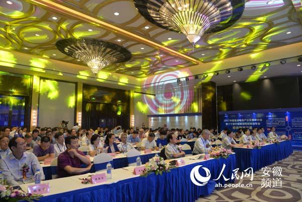 电路行业协会研讨会暨集成电路产业区域协同创新高峰论坛在合肥举行