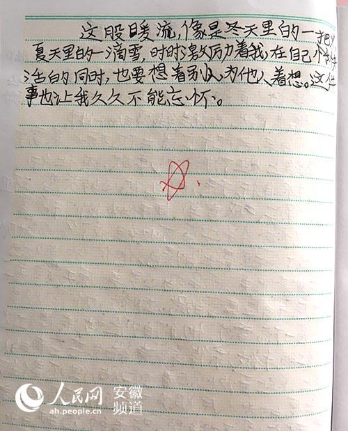 """合肥一小学生作文赞美城管爸爸:""""您是冬天最美的景色"""""""