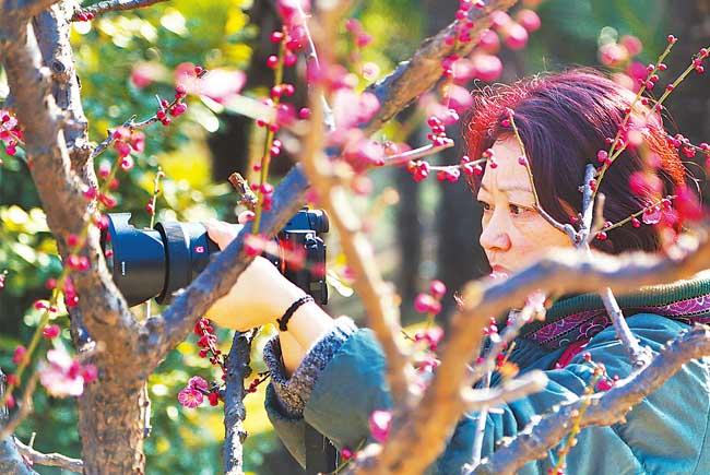 合肥市民植物园中享受明媚春光
