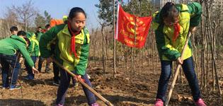 合肥市潜山路学校师生开展植树活动