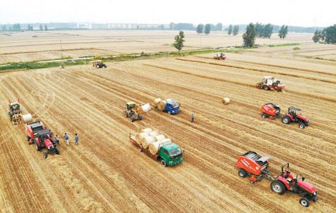安徽省已收获小麦2132万亩 进度接近六成