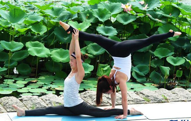 阜阳瑜伽爱好者大自然中秀身姿 绿色生活新方式