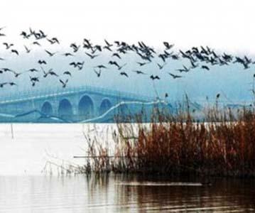 阜阳颍州西湖