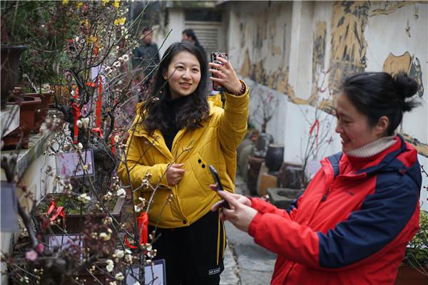 安徽蚌埠五河县第五届梅花展开幕