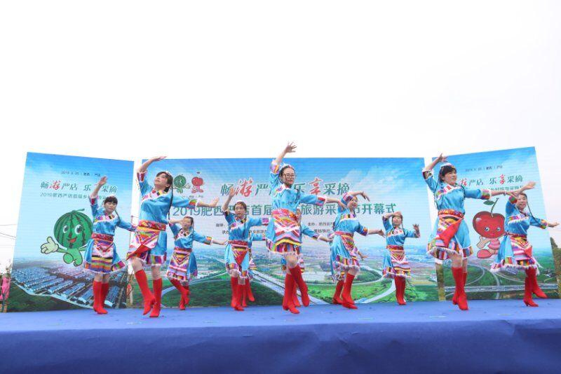 肥西严店举办首届乡村旅游采摘节