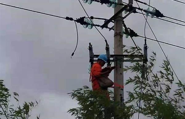 安徽广德县:受损线路全部恢复供电