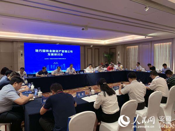 地方国有金融资产管理公司发展研讨会在合肥举办
