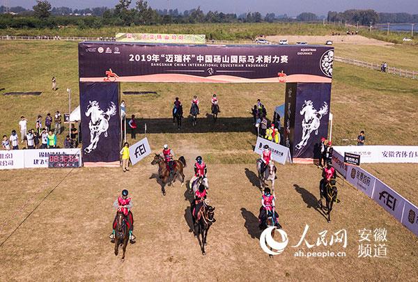 砀山国际马术耐力赛开赛下月将办三星级赛事填补国内空白