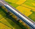"""全国铁路实现快递""""当日达""""        针对近期全国各地快递数量猛增,铁路部门利用高铁安全快捷和成网运行优势,实现快递运输当日到达目的地城市。"""