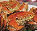 阳澄湖水质污染危及螃蟹        最近,苏州市为了保护阳澄湖水质,连年减少阳澄湖中大闸蟹围网养殖面积的信息,引起了众多消费者的注意。