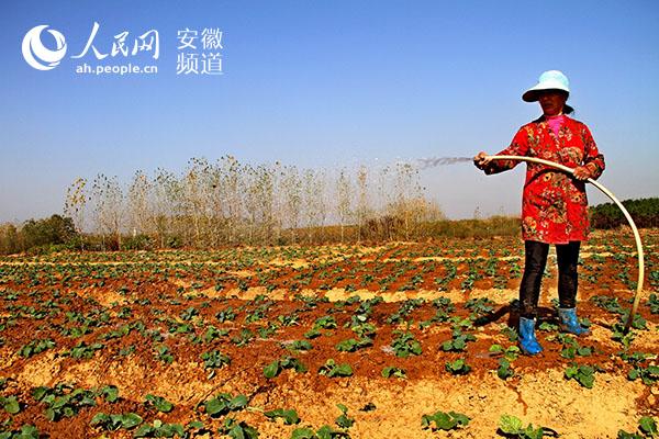 http://www.ahxinwen.com.cn/wenhuajiaoyu/92844.html