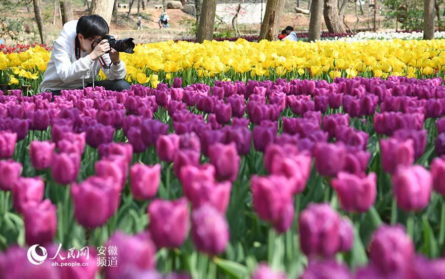http://www.ahxinwen.com.cn/yulexiuxian/129550.html