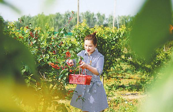 生态休闲观光农业助增收