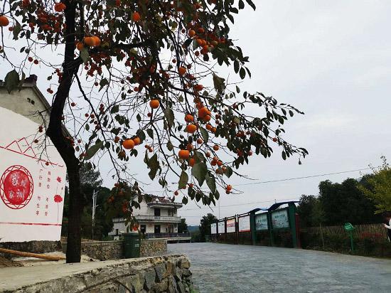 安徽青阳:水天一色康养新建
