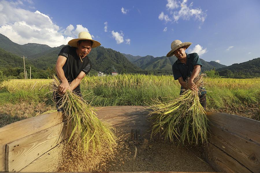 当地依旧保留着传统农耕模式。江建兴摄